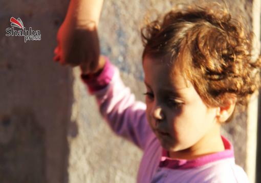 صورة الثوار في حمص وريف دمشق مستعدون لهدنة عيد ( قصيرة )