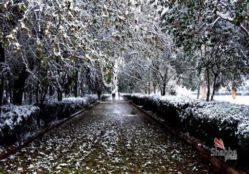 صورة العاصفة ميشا تضرب سوريا ولبنان الجمعة ,ثلوج وأمطار غزيرة ورياح قوية