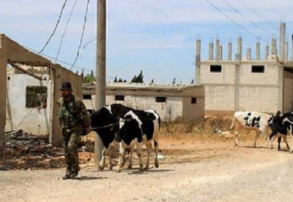 صورة الأسد يعد مرتزقته بمنحة مالية