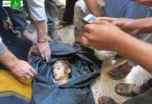 صورة سبعة عشر شهيدا في البارة وتقدم للثوار في أبو ضهور