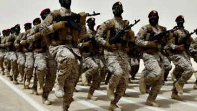 صورة الأوربيون يؤيدون دخول قوات عربية إلى سوريا وعلى رأسهم فرنسا