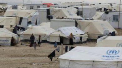 صورة قوات الأسد تستهدف مخيمات المهجرين شمال اللاذقية