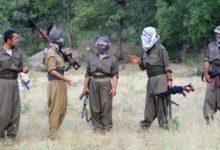 صورة الولايات المتحدة ترفض المقترح الكردي بتشكيل إدارة حكم ذاتي في سوريا