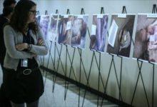 صورة بريطانيا تدعو نظام الأسد لإطلاق آلاف المعتقلين من سجونه