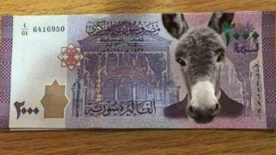 صورة الحيوان بألفين هاشتاغ سوري للسخرية من الفئة الجديدة من عملة نظام الأسد