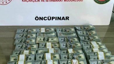 صورة تركيا تحبط محاولة تهريب 300 ألف دولار من تركيا إلى سوريا