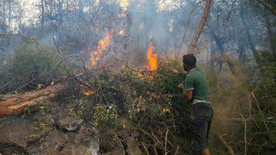 صورة وسائل إعلام تركية تحتفي بشاب سوري حاول إخماد حريق بيديه