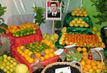 صورة نظام الأسد يوقع اتفاقيات لتصدير الخضار والفواكه إلى روسيا