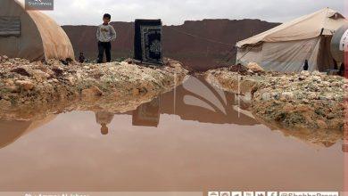 صورة قيمتها أكثر من 7 مليون دولار.. منحة يابانية للنازحين داخل سوريا
