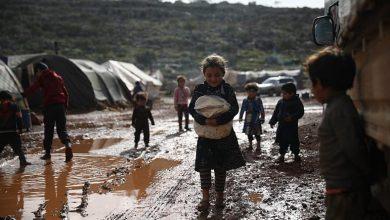 صورة الأمم المتحدة: 60 بالمئة من السوريين يعانون من انعدام الأمن الغذائي