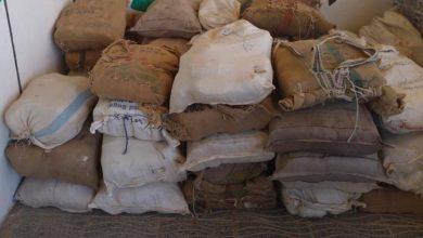 صورة الأردن يحبط تهريب أكثر من مليون حبة كبتاغون قادمة من سوريا
