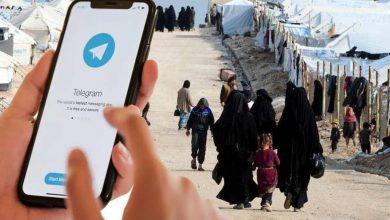 صورة مجلة أمريكية تكشـ.ـف محادثات لنساء من داعـ.ـش عبر تيلـ.ـيغرام