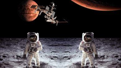صورة هكذا تم التضحية ببعض الكائنات الحية تمهيدا لغزو الفضاء