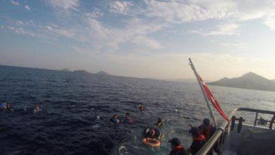 صورة المغرب وتركيا تنقذان أكثر من 550 مهاجرا في المتوسط والأطلسي