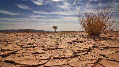 صورة تقرير أممي يدق ناقوس الخطر ويُحذر من تسارع ارتفاع درجات الحرارة