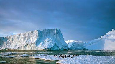 """صورة دراسة جديدة: ذوبان جليد القطبين يؤدي إلى """"تشوهات"""" في القشرة الأرضية"""