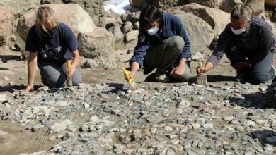 صورة اكتشاف فسيفساء في تركيا تعتبر الأقدم في منطقة البحر المتوسط