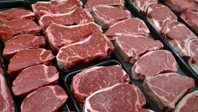 صورة اليابان تصنع أول شريحة لحم بواسطة طابعة ثلاثية الأبعاد