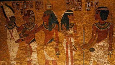 صورة هل اكتشفت بعثة مصرية هياكل عظمية تعود لجيش فرعوني في البحر؟