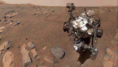 صورة ناسا تنشر صور سيلفي جديدة للمسبار بيرسيفير من كوكب المريخ