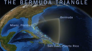 صورة أثناء تحقيقهم في اختفاء 5 طائرات.. علماء يكشفون لغزا مثيرا حول مثلث برمودا