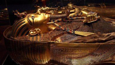 """صورة """"لغز كنز الفرعون"""".. أسرار الملك اللص الذي سرق ضريح أخته"""
