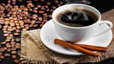 صورة تغير المناخ يدفع علماء فلنديين لإنتاج حبّات القهوة من مزارع الخلايا العائمة